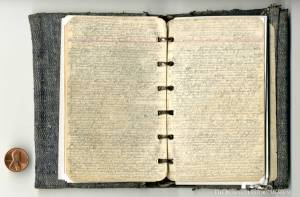 Pages from Albert Chestnut's diary, from the collection of The Buffalo History Museum.